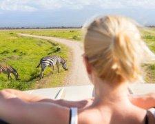 3 Days SHARED Safari - Lake Manyara, Ngorongoro Crater, Tarangire