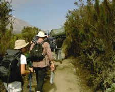 Climbing the Kilimanjaro - Machame Route (6 days/5 nights)