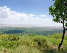 3 Days Private Safari - Serengeti and Ngorongoro Crater