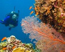 Scuba Diving - Zanzibar's best dive sites